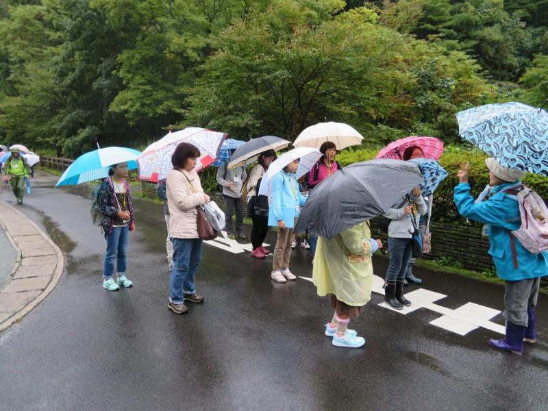 雨中の散策となりました